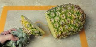 How To Grow A Bulb In A Vase How To Grow Pineapples As Houseplants Today U0027s Homeowner
