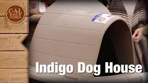 Igloo Dog House Petmate Indigo Dogloo Youtube