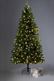buy lit 7ft collection luxe douglas fir tree from the