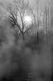 good ideas for a haunted forest for teens livestrong com