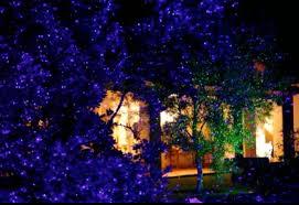 Blisslights Outdoor Firefly Light Projector Bliss Lights Outdoor Wedding Pinterest Bliss And Lights