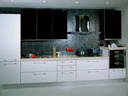 kitchen european kitchen cabinets in fresh high end modern