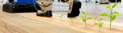 eco friendly hardwood floor services mastercare flooring