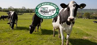 thanksgiving point farm country south mountain creamery the farmers u0027 market delivered
