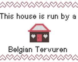 belgian tervuren 101 tervuren etsy