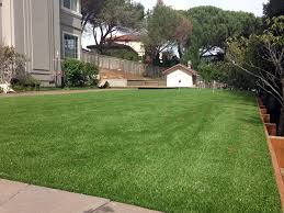 Putting Turf In Backyard Synthetic Turf Ripley California Backyard Putting Green Backyard