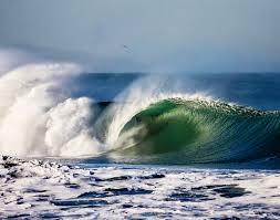 thanksgiving surf surfer guides surfer magazine