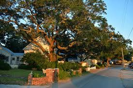 Bed And Breakfast Southport Nc Southport Nc Photo Tours And Travel Information