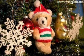 photo teddy and tree ornaments season