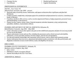 information security auditor resume examples of an example essay