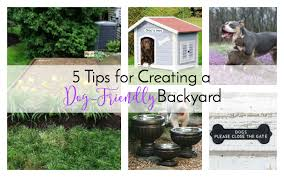 Backyard Landscaping Ideas For Dogs 5 Tips For Creating A Dog Friendly Backyard The Everyday Dog Mom