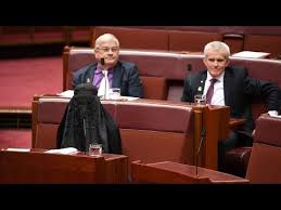 Burka Meme - pauline hanson wears a burqa into the australian senate youtube