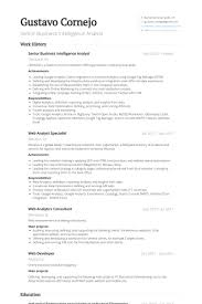 Cio Resume Samples by Information Officer Cio Resume Example Resume Template 2016 9210