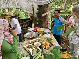 eco ponies garden a charming farm stay experience in tutong sutera