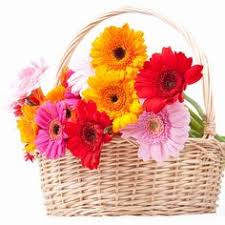 cheap flowers delivered send flowers online https 500px yashjame about online
