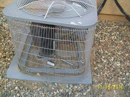 Rabbit Hutch Set Up Commercial Wire Rabbit Cages Dolgular Com