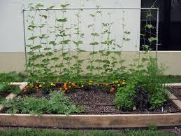 outdoor u0026 gardening how to build raised garden using easy methods