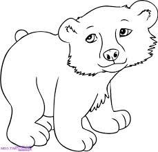 animals pictures drawing drawing pictures animals clipart best