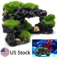 aquarium coral reef moss rock fish tank through pass island