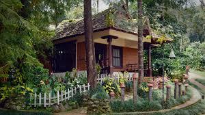 misty woods resort farm resort in coorg at karnataka india