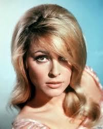 5 facts about 1960 hairstyles 13 best 60s hairstyles images on pinterest hair dos hairdos and