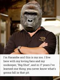 Rick Harrison Meme - harambe i m rick harrison and this is my pawn shop know your meme