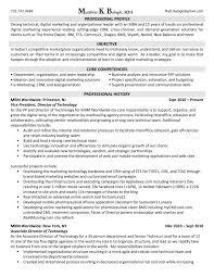 marketing executive resume digital marketing executive resume free resume sles