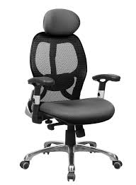 Ergonomic Office Chairs With Lumbar Support Ergonomic High Back Good Nylon Mesh On Back Normal Mesh On Seat