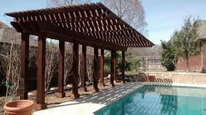 Plants For Pergola by Choosing Plants For Arbors And Pergolas Texas Best Fence