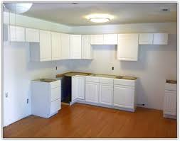 In Stock Kitchen Cabinets Lowes  Voluptuous - Stock kitchen cabinets