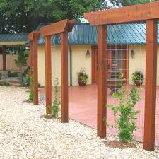 Privacy Screens For Backyards by Best 25 Trellis Design Ideas On Pinterest Trellis Ideas Diy