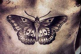 moth in black and white chest to this