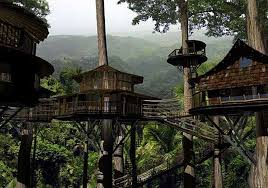 The Missing Links Amazing Treehouses You Can Stay In  Mental Floss