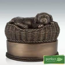 pet urns for dogs dog urn ebay