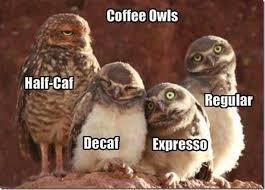 Too Much Coffee Meme - coffee face scrub