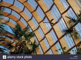 architecture wooden arches sheffield winter gardens building