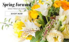 boston flowers roxbury florist flower delivery by s flowers and gifts