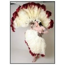 feather fan burlesque feather fan 26 28inch plumes feather fan