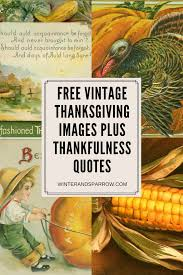 Vintage Thanksgiving Photos Free Vintage Thanksgiving Images Plus Thankfulness Quotes