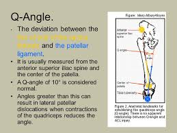 Lateral Patellar Ligament The Knee Joint Bones Of The Knee Femur Lateral Condyle 6 Left