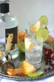 tom collins ingredients best 25 best gin cocktails ideas on pinterest recipe gin lime