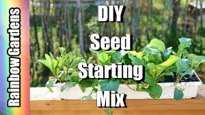 diy seed starting mix new with coco coir bricks starting the