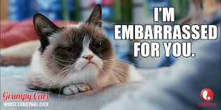 Grumpy Cat Memes Christmas - grumpy cat something similar has become my biggest criticism