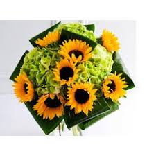sunflower delivery sunflower send sunflowers online milan florist same day