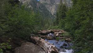 Cabinet Mountains Wilderness A Stunning Hike To Leigh Lake Another Walk In The Park