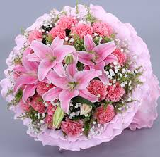 flowers express the pink carnation flowers express the city of ruyang city of