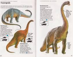 love chasmosaurs vintage dinosaur art spotter u0027s