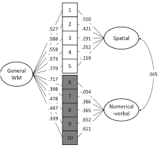 frontiers a latent factor analysis of working memory measures