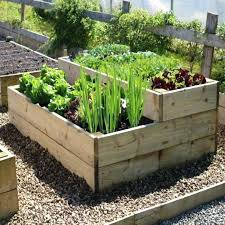 Small Vegetable Garden Ideas Pictures Vegetable Garden Landscaping Ideas Large Size Of Backyard
