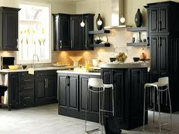 Kitchen Colors With Black Cabinets Kitchen Paint Ideas Image Of Cabinet Painting Black With Light
